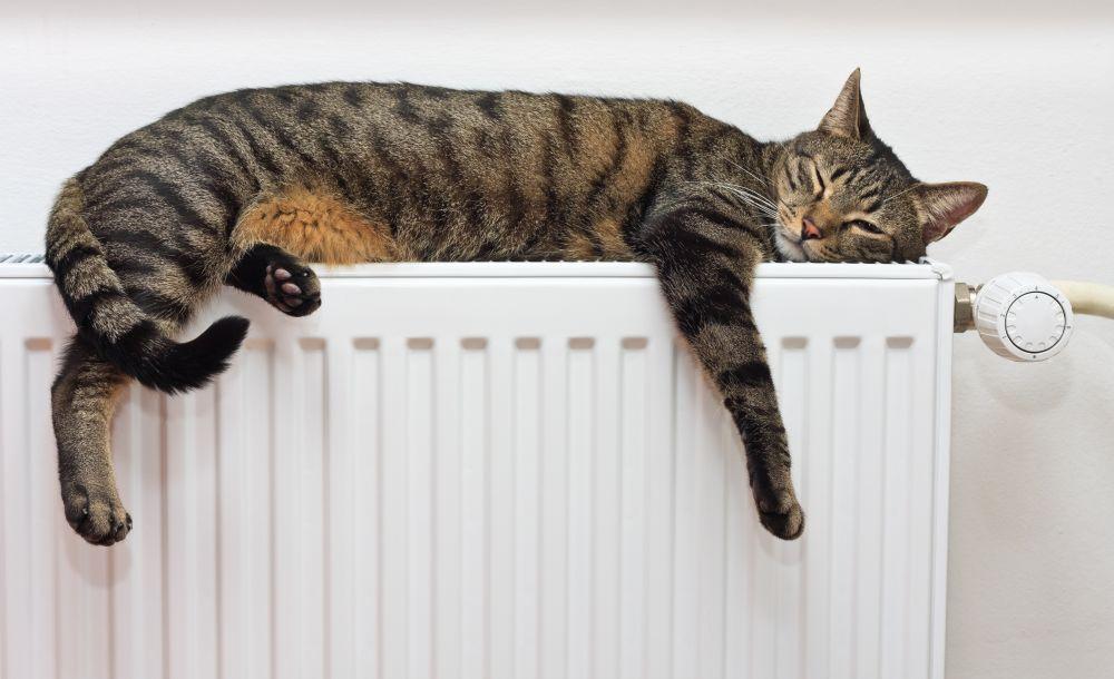 Få fuld kontrol over dit varmeforbrug med smartheating fra Danfoss
